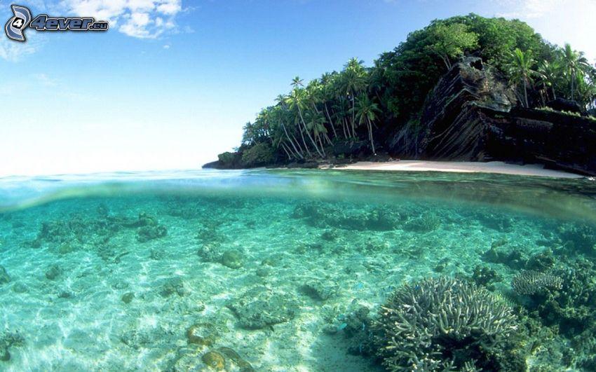 island, shallow azure sea, sea-bed