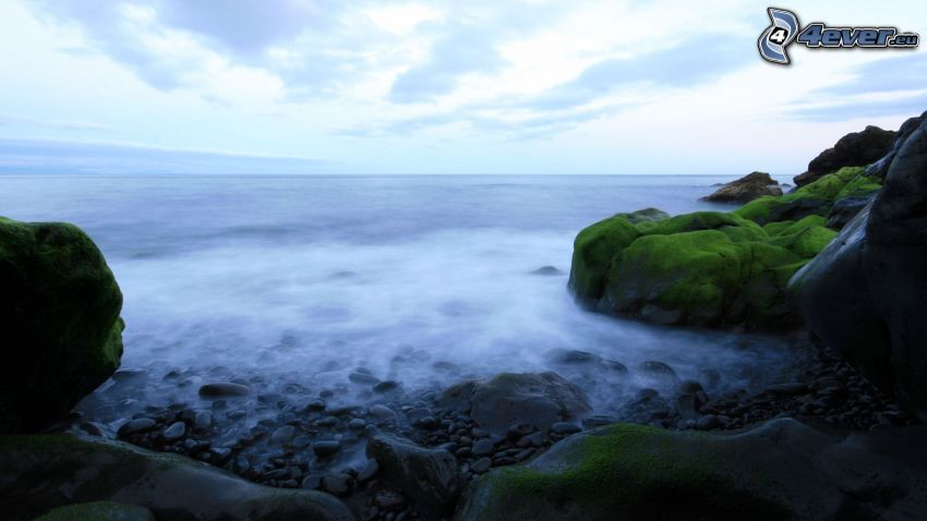 rocky beach, sea