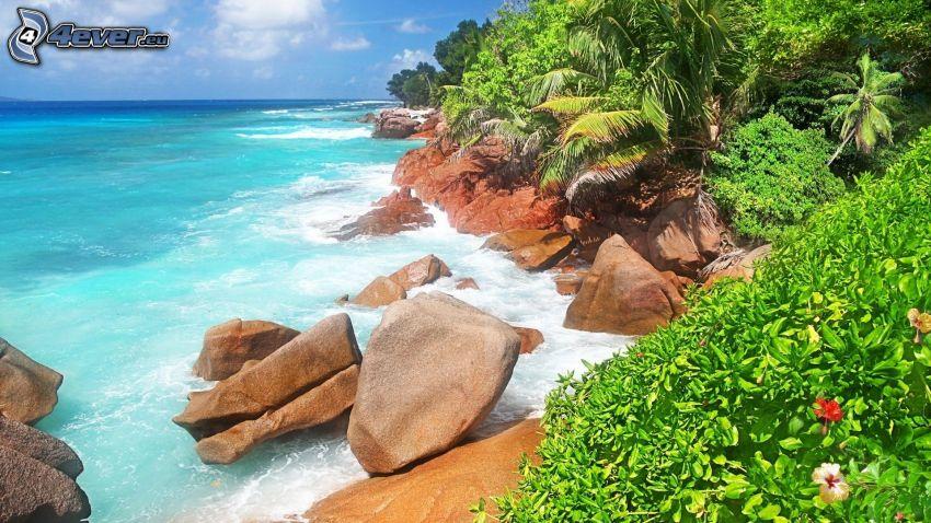 rocky coastline, greenery