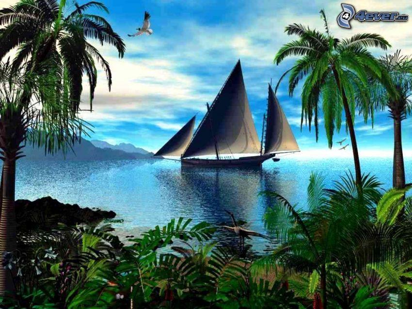 sailing boat, sea, palm trees, plants
