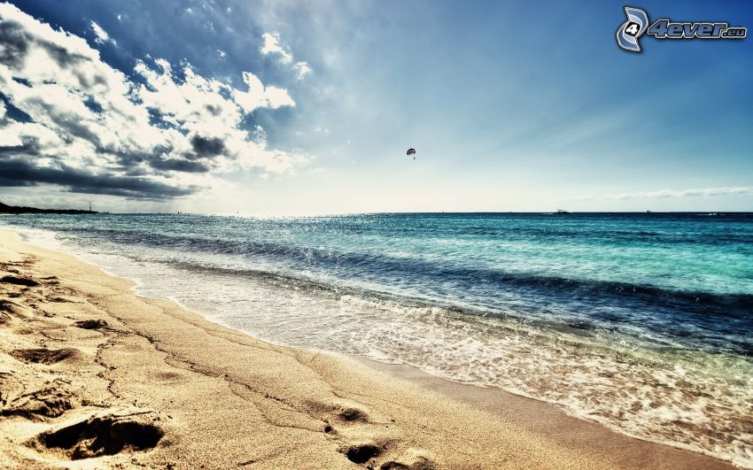 sandy beach, sea, paragliding