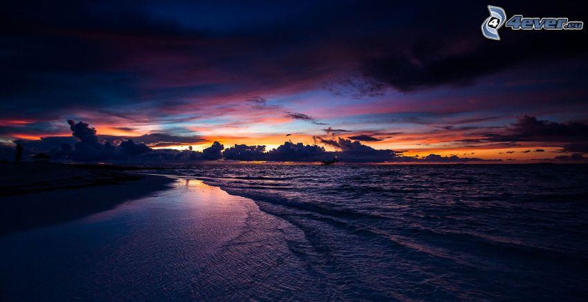 sea, beach, evening sky