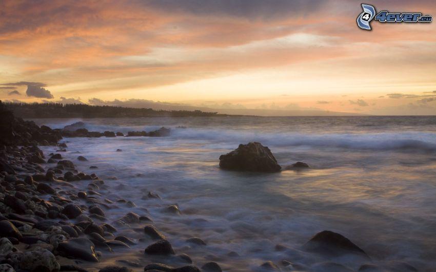 sea, rocky beach