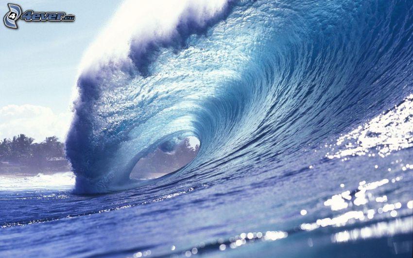 sea, wave