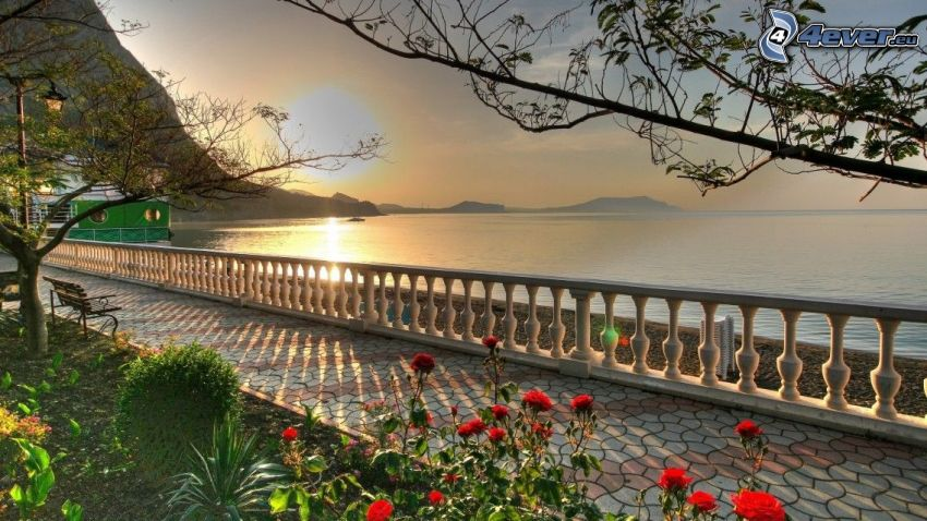 sidewalk, railing, red roses, sunrise, sea