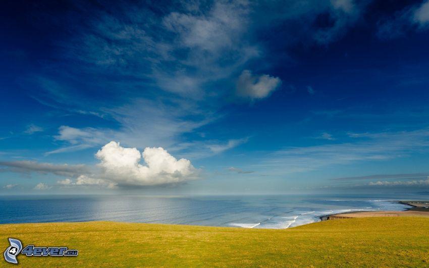 sky, sea, coast, meadow