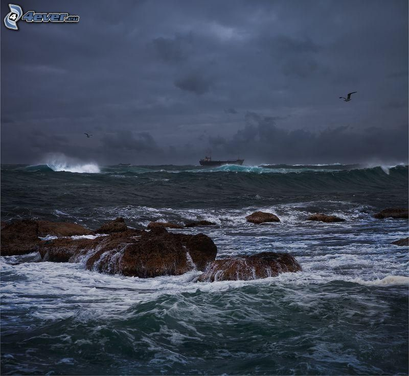 stormy sea, seagull, ship, storm clouds, rocks in the sea