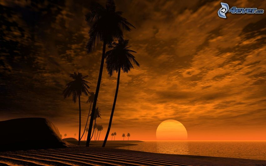 sunset over the sea, Africa, palm trees, tropical island, clouds