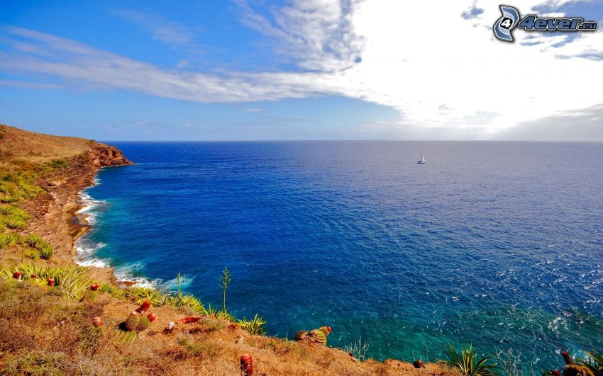 the view of the sea, coast