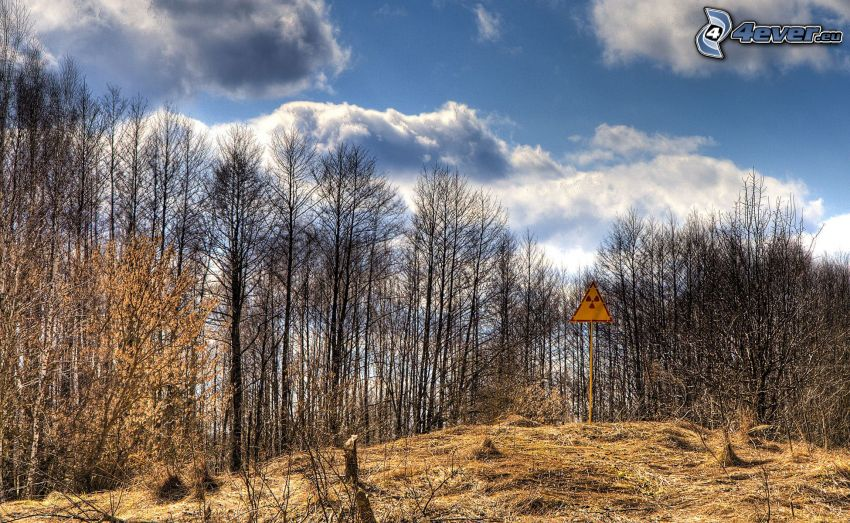 sign, radioactivity, forest, clouds, Chernobyl