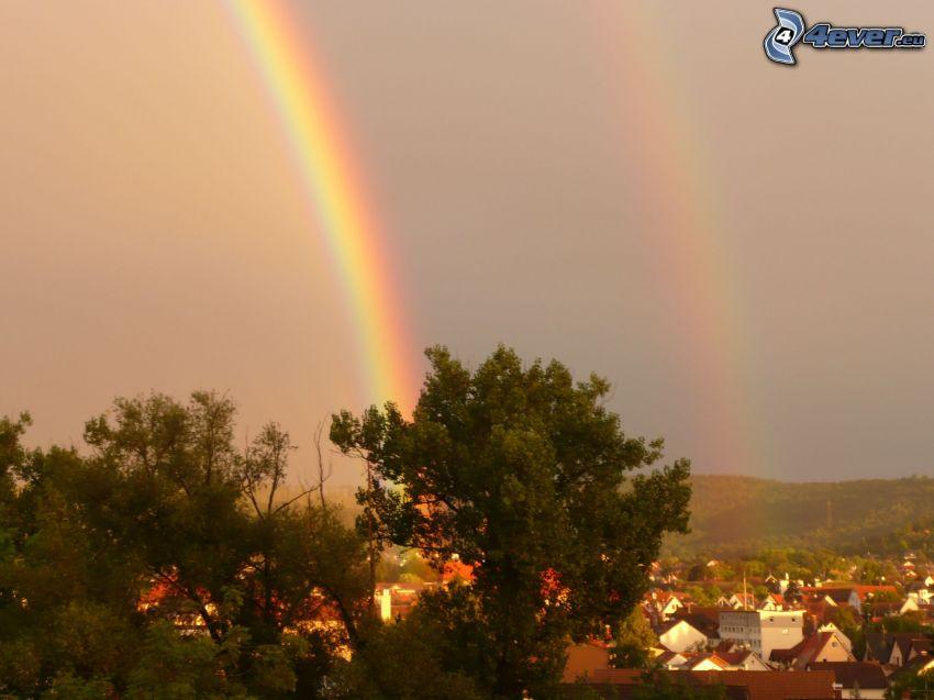 rainbow, trees, village