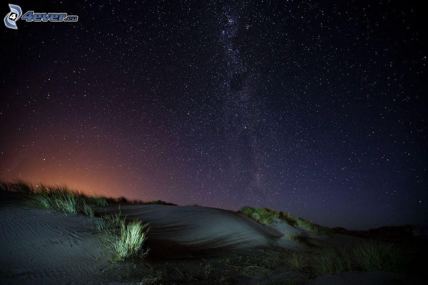 starry sky, desert
