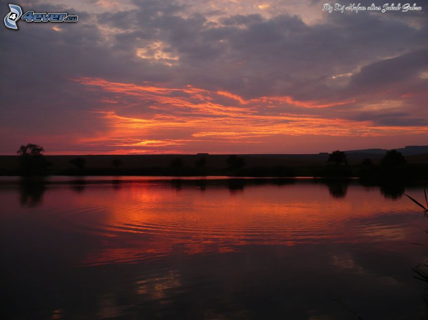 sunset over the lake, evening dawn, water surface