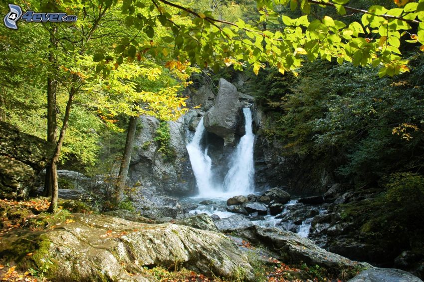 Slovak Paradise, waterfall in the forest