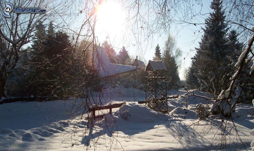 snowy landscape, palings