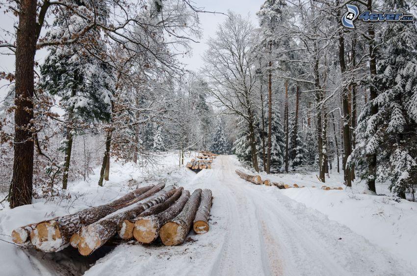 snowy landscape, winter road, wood