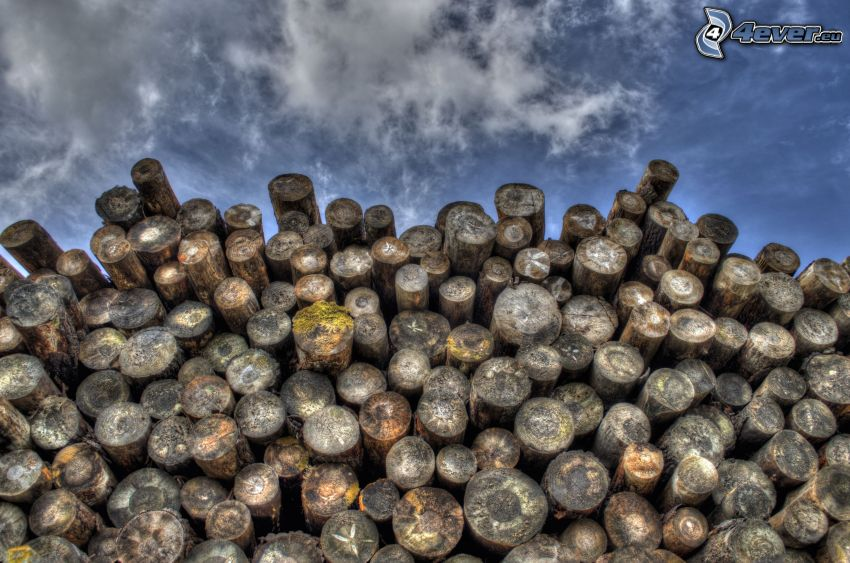 stacked wood, HDR