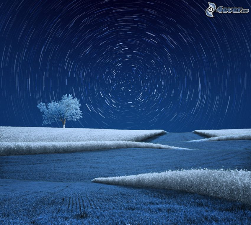 starry sky, field, frozen grass, frozen tree, lonely tree, circles