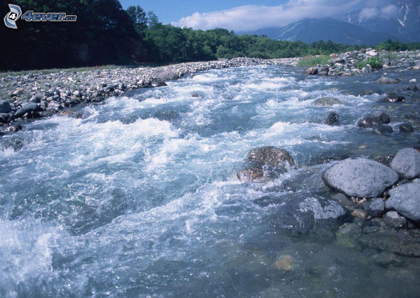 stream, rocks