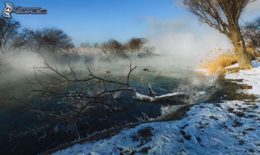 stream, snow, steam