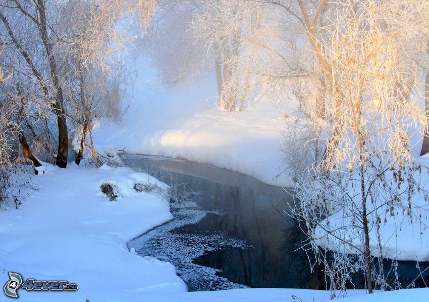 stream, snow