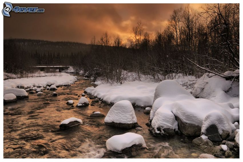 stream, snowy landscape, forest after sunset
