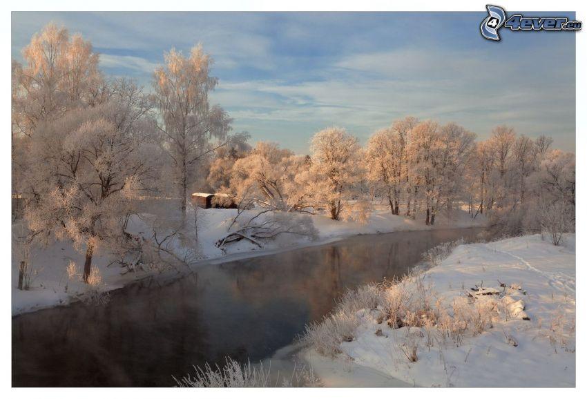 stream, snowy trees