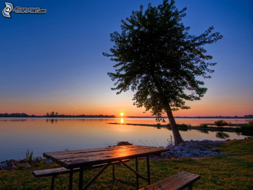 sunset behind the sea, tree, table, benches