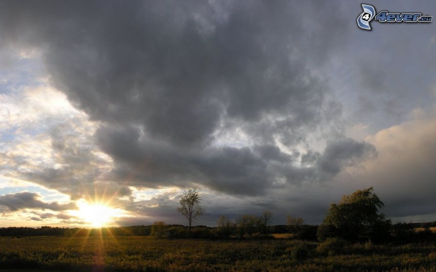 sunset in the meadow, dark clouds