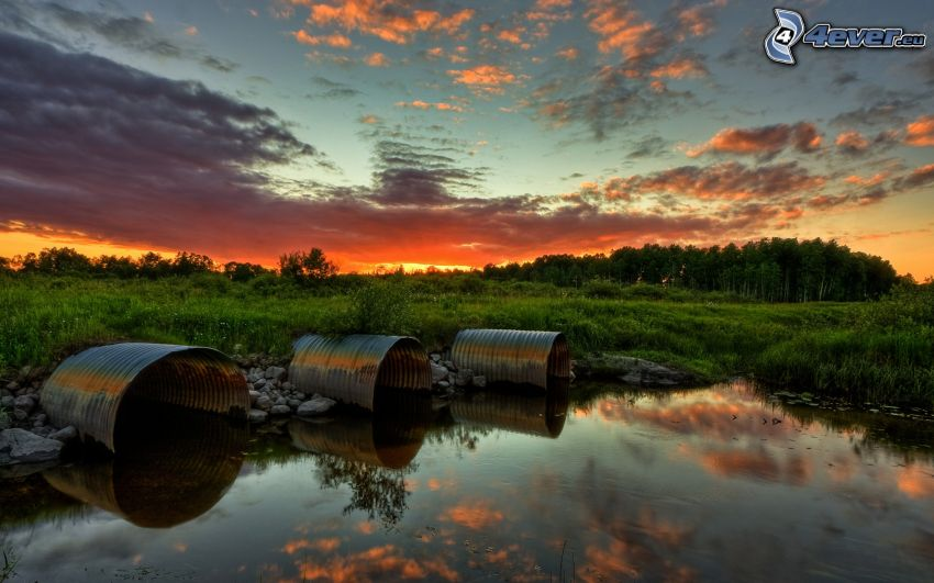 Sunset over the wetlands, greenery, barrels