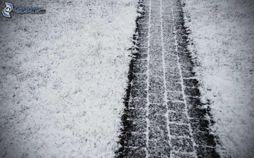 tracks in the snow, grass