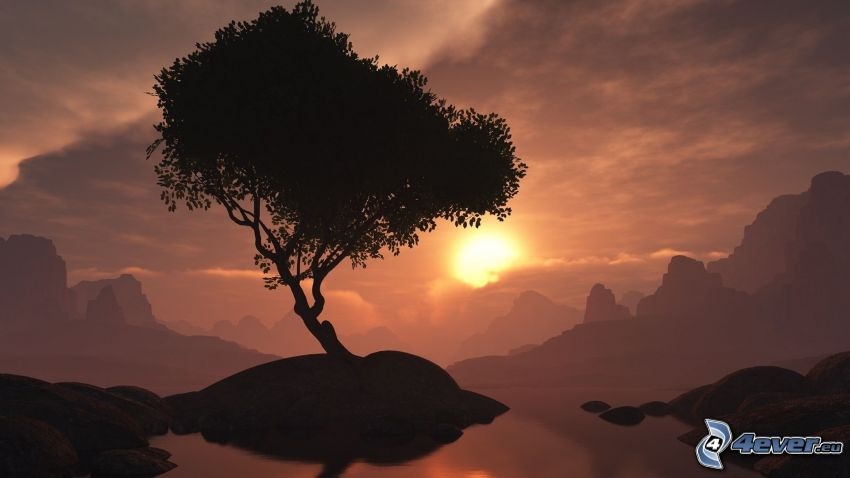 tree on a rock, sunset, silhouette of tree, digital landscape