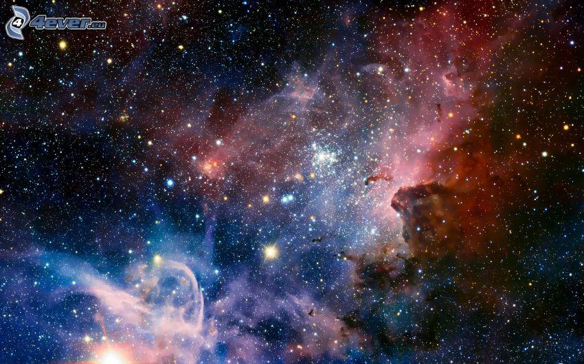Eta Carinae, stars