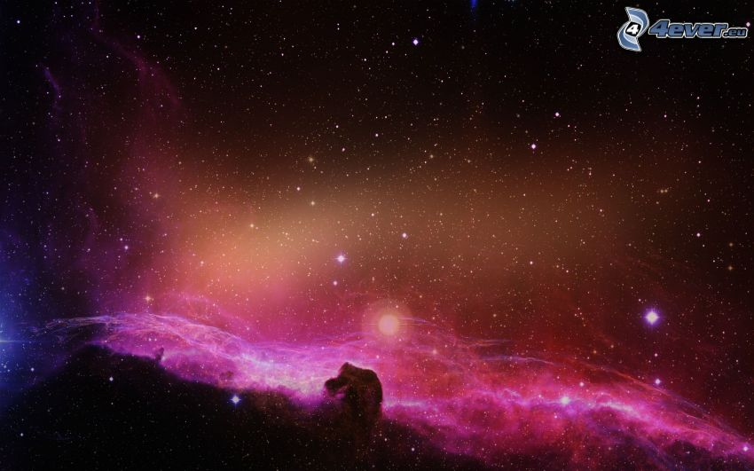 Horsehead Nebula, stars