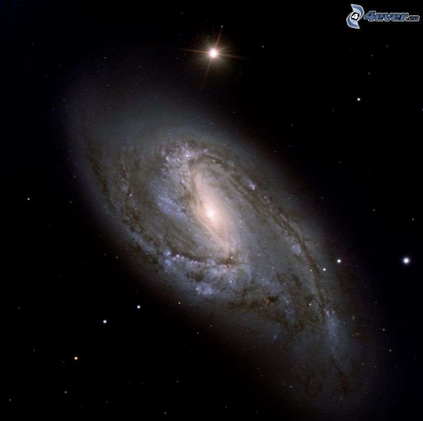 M66, spiral galaxy, stars