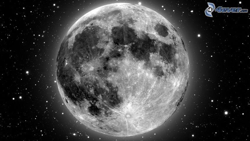 Moon, stars, black and white