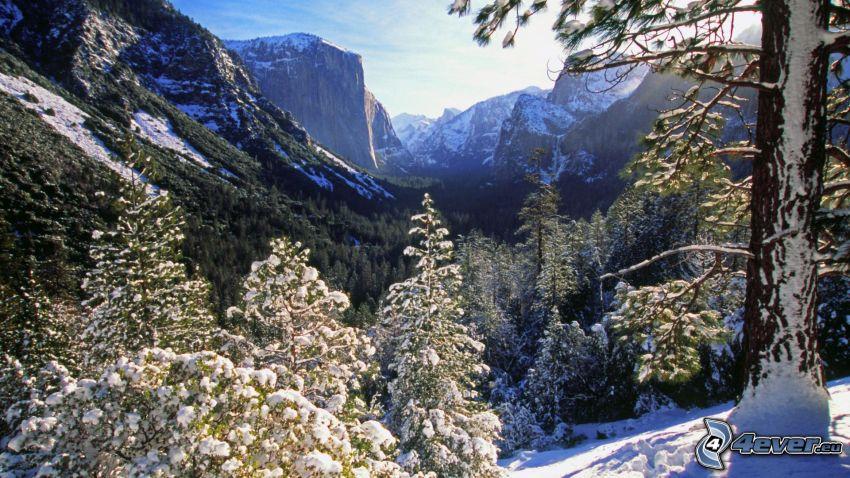 valley, El Capitan, Yosemite National Park, snow