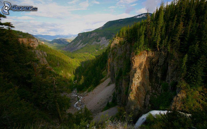 valley, rocks, cliff, forest, stream
