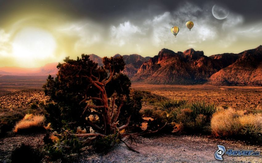 valley, sunset, mountain pine, balloons, moon