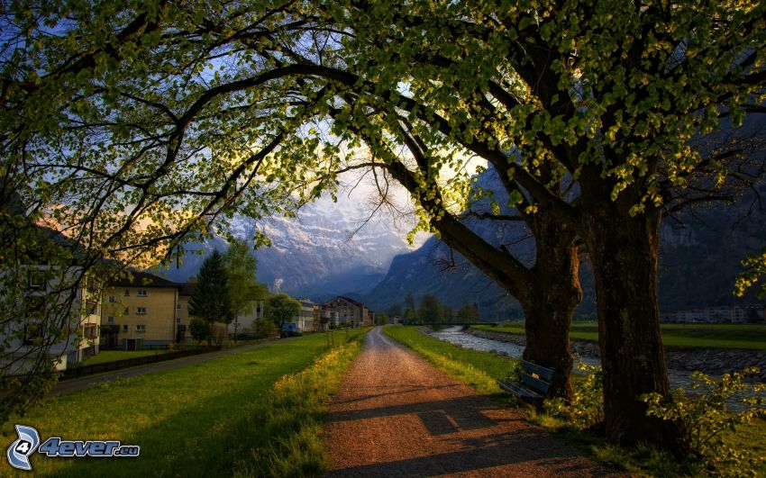 walkway along brook, trees, green grass, houses, snowy mountains, Switzerland
