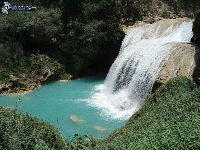 waterfall, Mexico, greenery