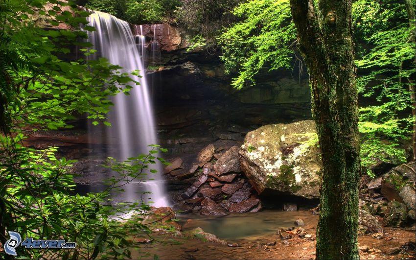 waterfall, rocks, greenery
