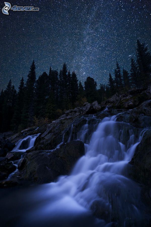 waterfall, rocks, night, starry sky, coniferous trees