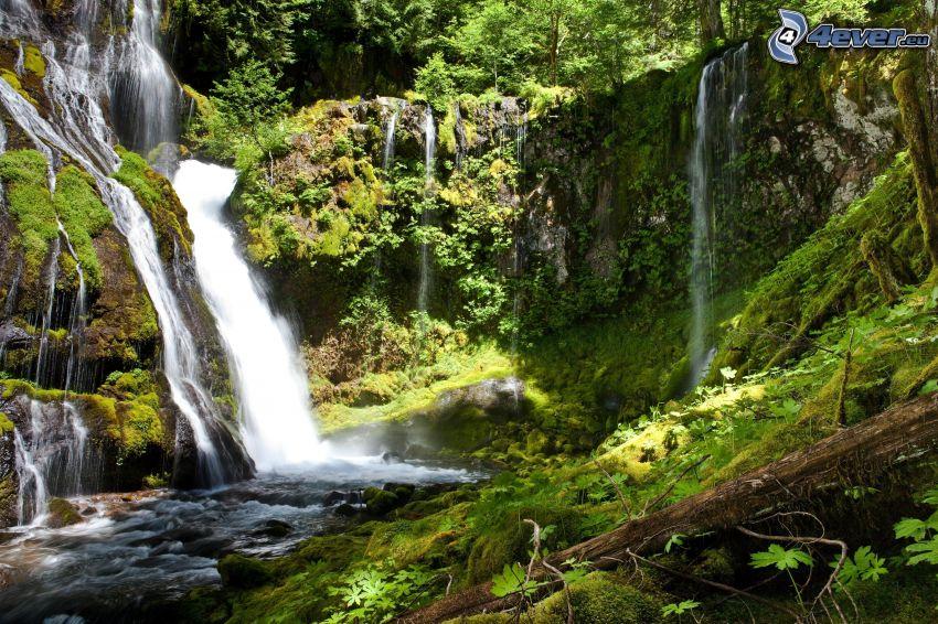 waterfalls, greenery