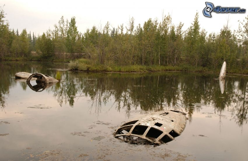 wreck, swamp