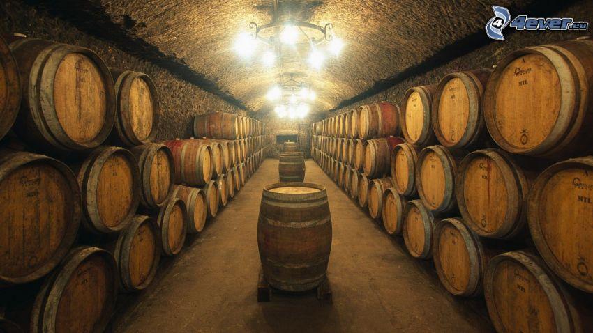 barrels, cellar