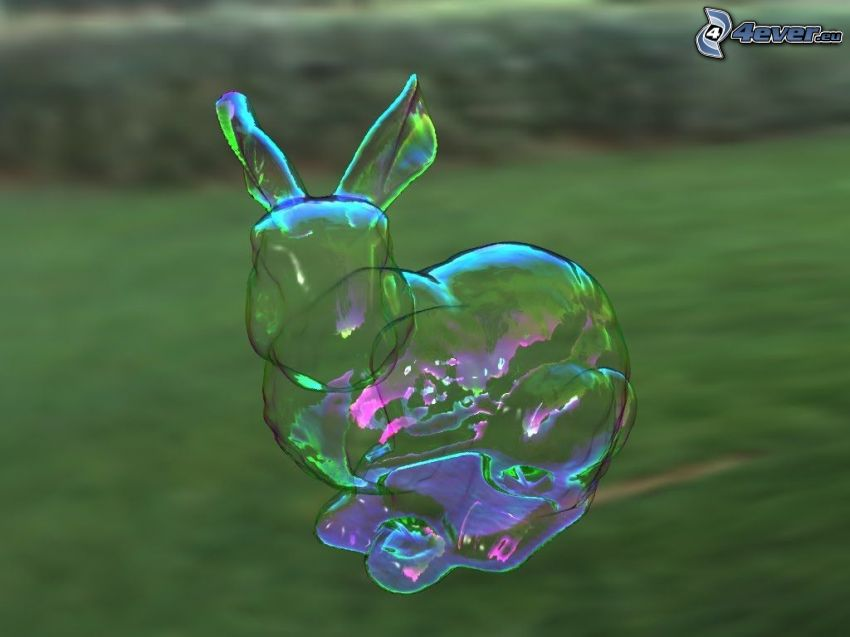 bubble, bunny