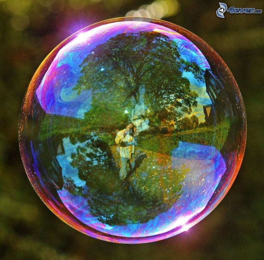 bubble, reflection