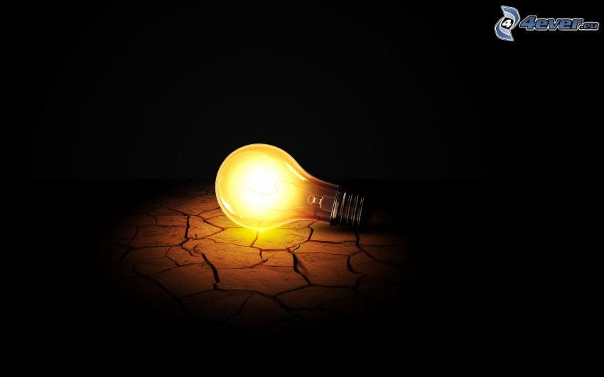 bulb, crack