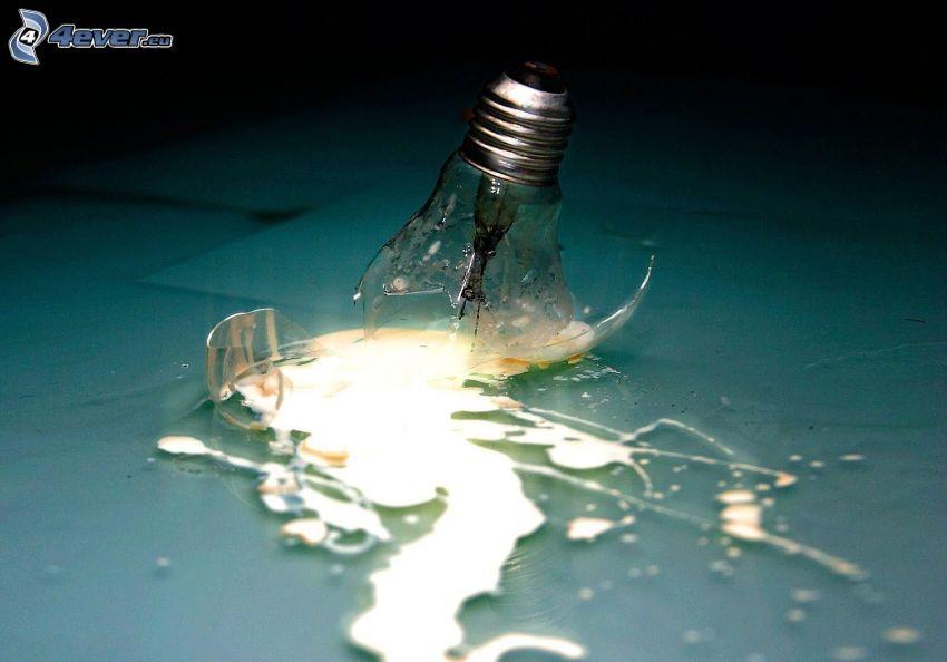 bulb, shards